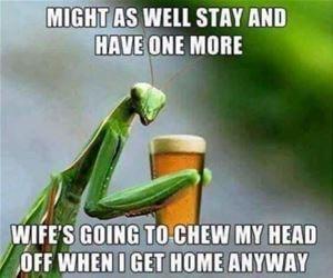 CHUCKLE-praying mantis